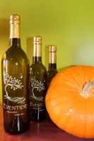 All-Natural Roasted Pumpkin Seed Oil