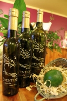 Persian Lime Fused Olive Oil